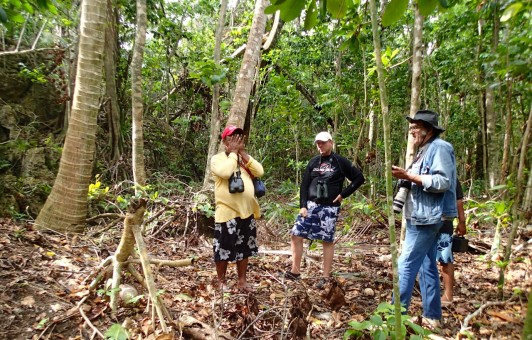 The project team examines destroyed megapode mounds after a typhoon in 2013.