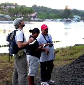 Palau birding